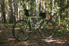 Surly Minty Explorer photo
